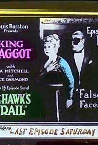 The Hawk's Trail