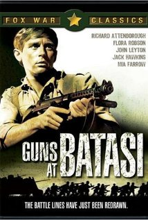 Guns at Batasi